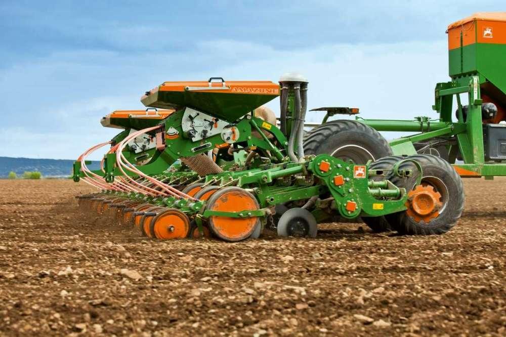 Посев кукурузы: глубина и скорость